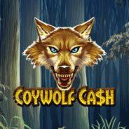 Coywolf Cash Ilmaiskierrokset