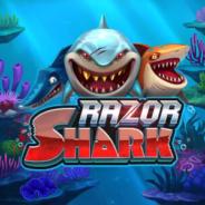 Razor Shark Ilmaiskierrokset