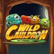 Wild Cauldron Ilmaiskierrokset