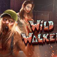 Wild Walker Ilmaiskierrokset